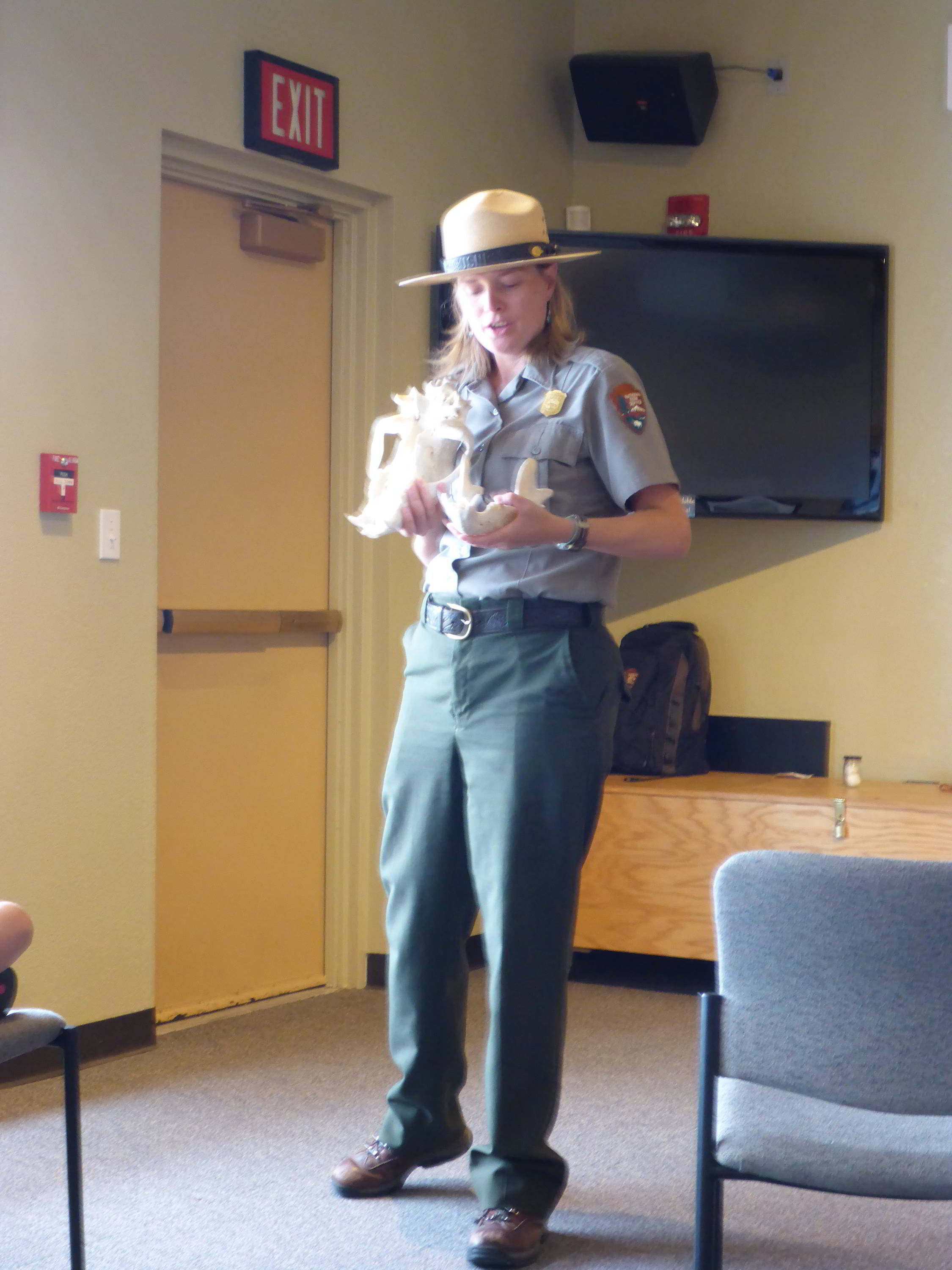 Wild About Bears Talk, Great Sand Dunes National Park Rangers Station, Colorado